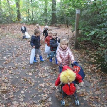 P : de herfst kleurt onze omgeving