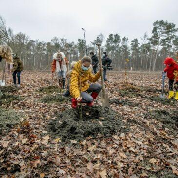 Kinderraad plant bomen in Bevel